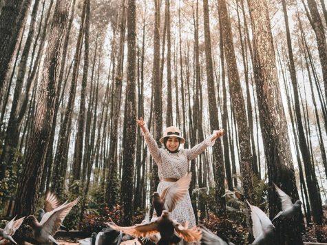 wisata pinus mangunan