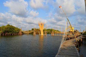 jembatan siapi api mangrove kulonprogo
