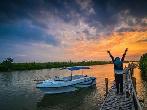 Jembatan Hutan Mangrove Wana Tirta Kulonprogo Jogja | Harga Tiket Masuk